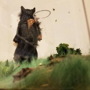 Miniature cat butterfly catcher diorama.